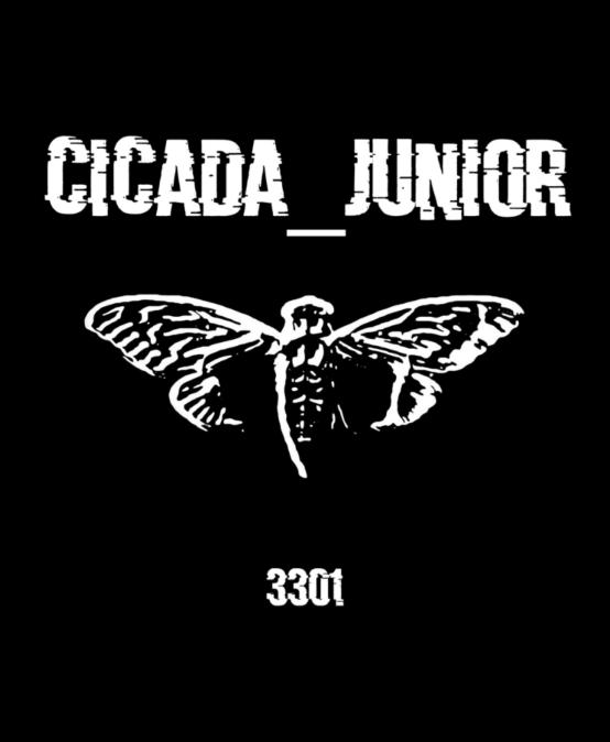 Квест «Cicada_Junior»