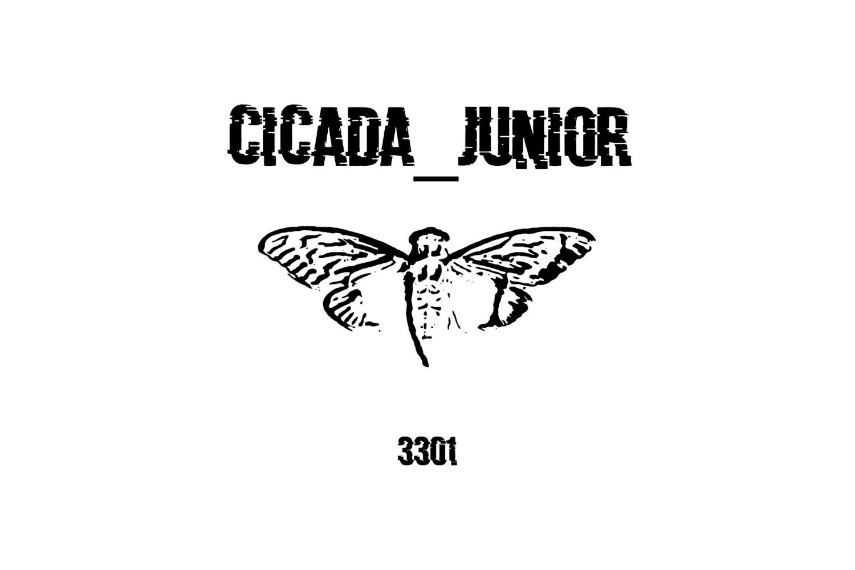 «Cicada_Junior»: итоги