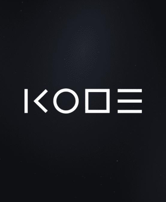 Встреча с директором компании KODE